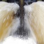 Wasser 2 gerahmt 52x42cm 1/15